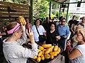 Una guía demuestra durante su recorrido turístico en Museo Hacienda Buena Vista, Bo. Magueyes, Ponce, PR (DSC03588).jpg