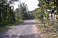 Univerisity of Kalyani campus 02.jpg