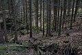 Unterwald-Ponor 08.jpg