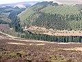 Upper Derwent Valley towards Ditch Clough Plantation - geograph.org.uk - 1260929.jpg
