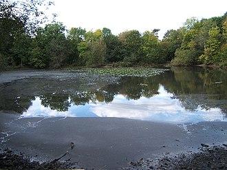 Ashtead - Upper Pond, Ashtead Park
