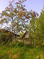 Valday, Novgorod Oblast, Russia - panoramio (1228).jpg