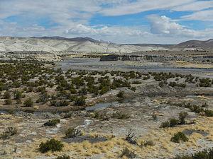 Lauca River - Image: Valle del río Lauca, Región de Arica y Parinacota