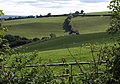Valley at Pyncombe Farm - geograph.org.uk - 1520923.jpg