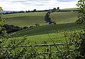 Valley at Pyncombe Farm - geograph.org.uk - 1520923.jpg