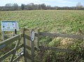 Vell Mill Meadow Nature Reserve - geograph.org.uk - 1152846.jpg