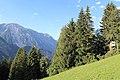 Venet - panoramio (82).jpg