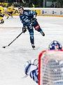 Vienna Capitals vs Fehervar AV19 -25.jpg
