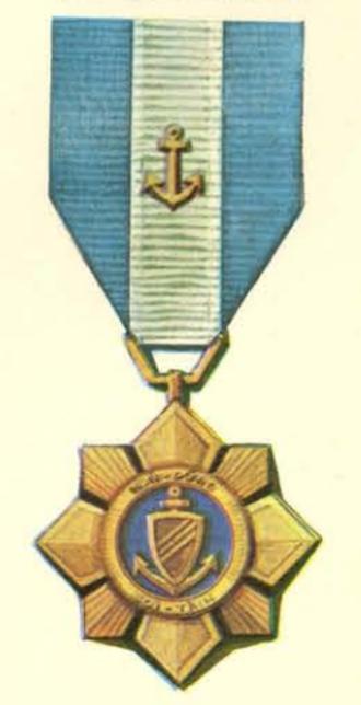 Navy Gallantry Cross - Navy Gallantry Cross with Bronze Anchor
