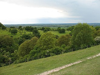 Ellesborough and Kimble Warrens - View across Great Kimble Warren
