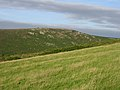 View from Trewey Hill towards Zennor Hill - geograph.org.uk - 40680.jpg