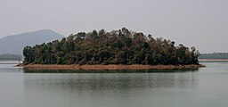 View from a dam in Kinnarsani WS, AP W IMG 5776.jpg