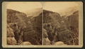 View in Williams Canyon, by Thurlow, J., 1831-1878.png