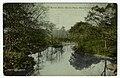 View of Bronx River, Bronx Park, New York. (3990852126).jpg