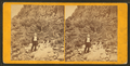View of cliff with Chelsea party, by John B. Heywood.png