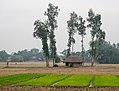 Village Fields (16596769371).jpg