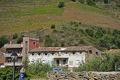 Vinyes de Porrera, el Priorat, Tarragona.jpg