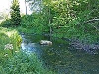 Vitrupes ieleja netālu no Brīdagas (Ķirbižu Upītes) 1.jpg