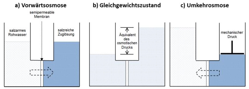 File:Vorwärtsosmose vs Umkehrosmose.png