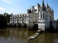 Vu du Château de Chenonceaux (37).JPG