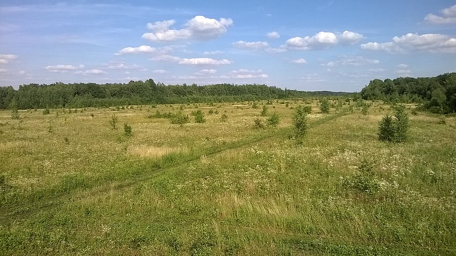 Zolotukhinsky District