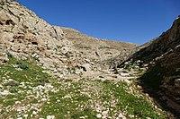 Wadi-Makukh-540.jpg
