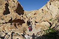 Wadi-Makukh-641.jpg
