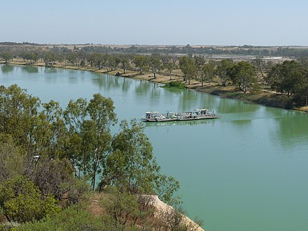 A ferry crossing the Murray River towards the town of Waikerie, South Australia Waikerie ferry, Riverland 1.JPG