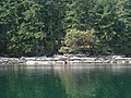 Wakes Cove Provincial Park.jpg