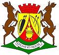 Wappen Mariental.jpg