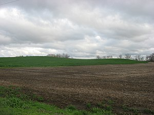 Ware Mounds and Village Site - Image: Ware Mounds and Village Site