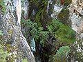 Wasserfall zwischen Felsen.JPG