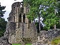 Wenlock Priory - panoramio (8).jpg