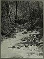 Western field (1905) (14779321222).jpg