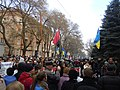 Western people march, Odessa 26.jpg