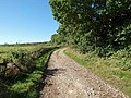 What's around the bend - geograph.org.uk - 993503.jpg
