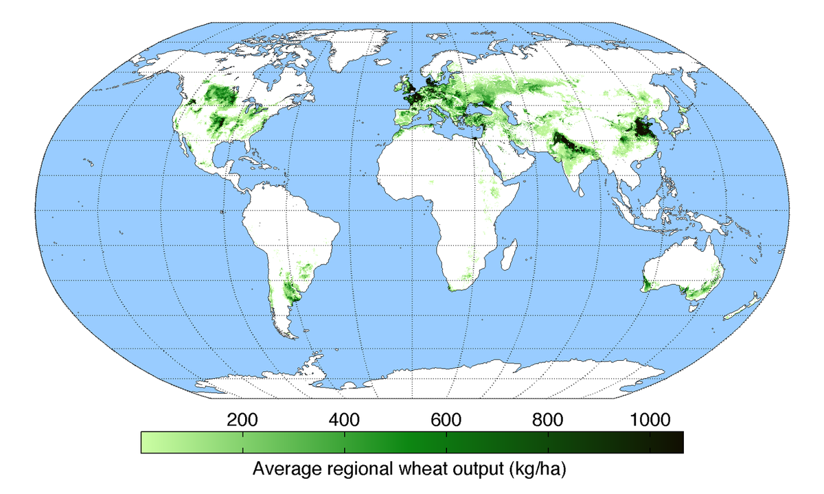 International Wheat Production Statistics Wikipedia - Us wheat production map