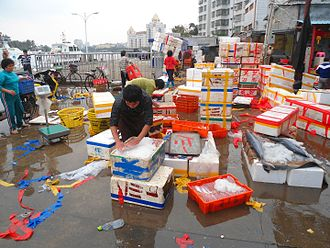 Distribution (business) - A wholesale fish market at Haikou, New Port