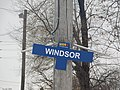 Windsor Station (31526538460).jpg