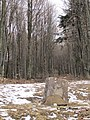 Winter - panoramio (36).jpg