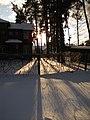 Winter day in Druvciems - panoramio (11).jpg