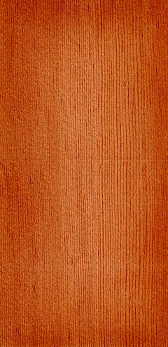 Wood Pseudotsuga taxifolia