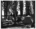 Woodward Forest Camp on Langdon Lake-Oregon-1956.jpg