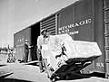 Worker Transporting Packages, Texas and Pacific Railway Company (12818374045).jpg