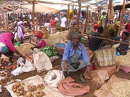 Working at the market in Dembi Dollo, Ethiopia.jpg