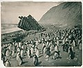 Wreck of the 'Gratitude', Macquarie Island, 1911 (2866462013).jpg