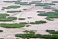 Xiapu, Ningde, Fujian, China - panoramio (20).jpg