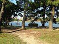 Yanagishima Island in Ohori Park 2.JPG