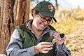 Yellowstone Bird Program (25) Wildlife Biologist Lauren Walker examines a spotted towhee (48804404781).jpg