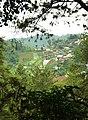 Yosiara-secretgarden-tamantengahkota kotaSolo-tamantawamangu(2).jpg